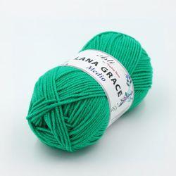 Пряжа Троицкая LANA GRACE Medio (25% мериносовая шерсть, 75% акрил супер софт) 5х100г/170м цв.0723 яр.зелень