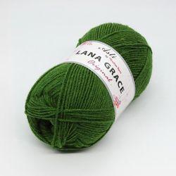 Пряжа Троицкая LANA GRACE Original (25% мериносовая шерсть, 75% акрил супер софт) 5х100г/300м цв.3664 св.зеленый
