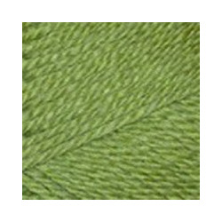 Пряжа Пехорка Конкурентная (50% шерсть, 50% акрил) 10х100г/250м цв.119 горох