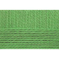 Пряжа Пехорка Конкурентная (50% шерсть, 50% акрил) 10х100г/250м цв.434 зеленый