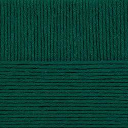 Пряжа Пехорка Молодёжная (91% акрил высокообъемный, 9% полиамид) 5х200г/280м цв.573 т.изумруд