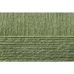 Пряжа Пехорка Удачный выбор (100% акрил высокообъёмый) 5х100г/200м цв.009 зеленое яблоко