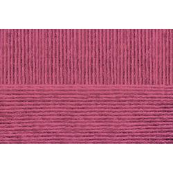 Пряжа Пехорка Удачный выбор (100% акрил высокообъёмый) 5х100г/200м цв.021 брусника
