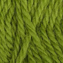 Пряжа Камтекс Аргентинская шерсть (100% импортная п/т шерсть) 10х100г/200м цв.130 липа